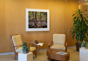 Reception, Corporate Office, Newport Beach: Photograph by Charles Cramer