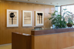 Corporate Office, Reception, Newport Beach: Triptych by Larry Vogel