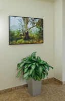 Rancho Bernardo: Hallway with photography by Larry Vogel