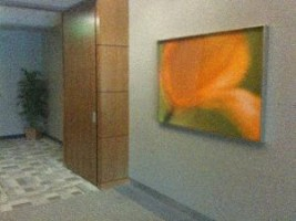 Del Mar: Office with William Neill photography, Impressions of Light