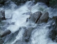 Cascade Creek Spring, Yosemite