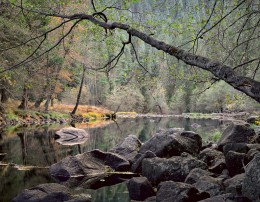 Overhanding Branch, Merced River, Yosemite