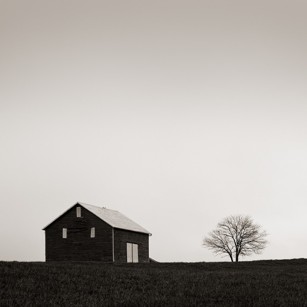 One Tree Hill, Shenandoah Valley (N/A)