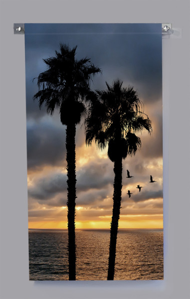 Twin Palms and Pelicans