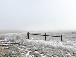 Fence, Van Metre County, South Dakota