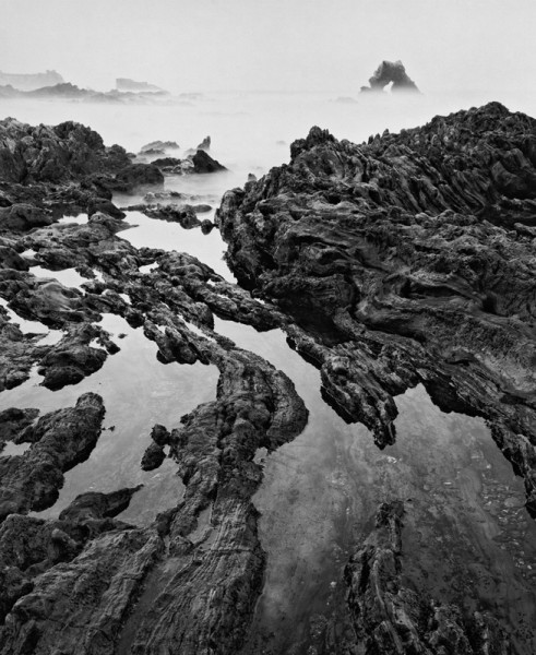 Arch Rock & Tide Pools (V)