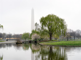 Constitution Garden Pond, National Mall