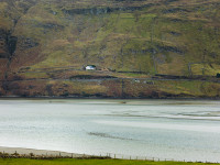 Sheep Farm, Loughros Beg Bay, County Donegal