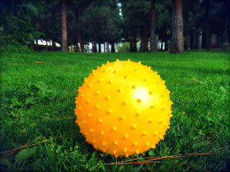 Sometimes the Sun Pretends to be a Ball Resting in the Grass