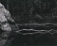 White Branch, Merced River, Yosemite