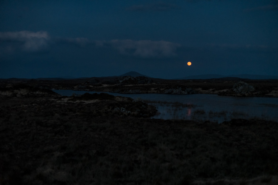 Full Moon over Bog Road