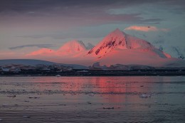 Lemaire Channel Alpenglow, Antarctica