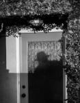 The Rear Door
