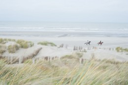 Dunes, Blankenberge, Belgium