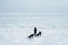 Frozen Sea, Odessa, Ukraine