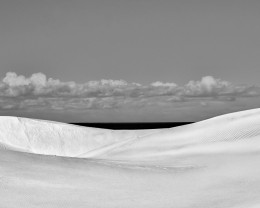 Dune Anatomy, No. 16A