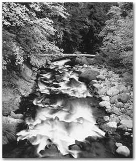 Deer Creek (Sold)