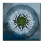 Silver Tree Mandala