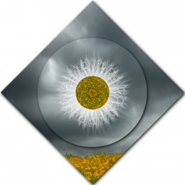 Evidence of Myth Mandala – DIAMOND ORIENTATION