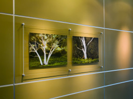 Corporate Office San Diego: Photographs on curved wall by Larry A. Vogel
