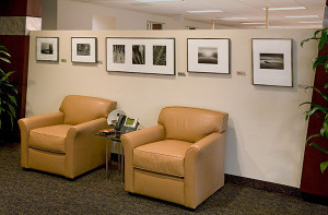 Executive Waiting Room: Assorted Photographs