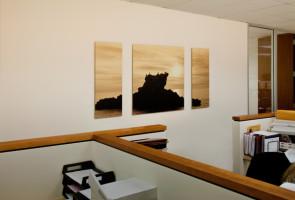 Real Estate Development Company Newport Beach: Triptych by Larry Vogel