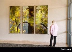 Del Mar: Entrance Lobby with photography by Larry Vogel from Motion Picture series