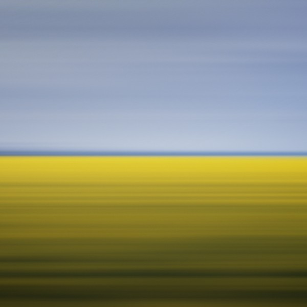 Drift 11: Mustard Field, Winnipeg