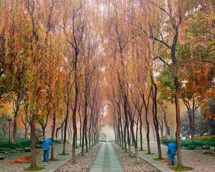 Sweepers, West Lake Hangzhou, China