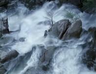 Cascade Creek Spring, Yosemite