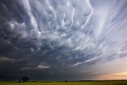 Mammatus Clouds IV, NE