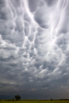Mammatus Clouds III, NE
