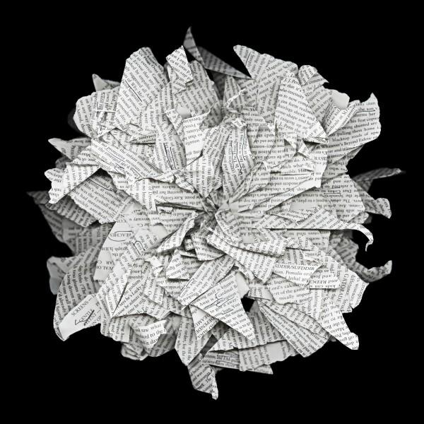 Freeform Origami (A)