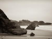 Incoming Tide, Garrapata