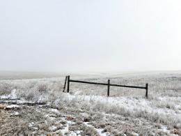 Fence, Van Metre County, South Dakota