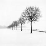 Snow Scene XXVI