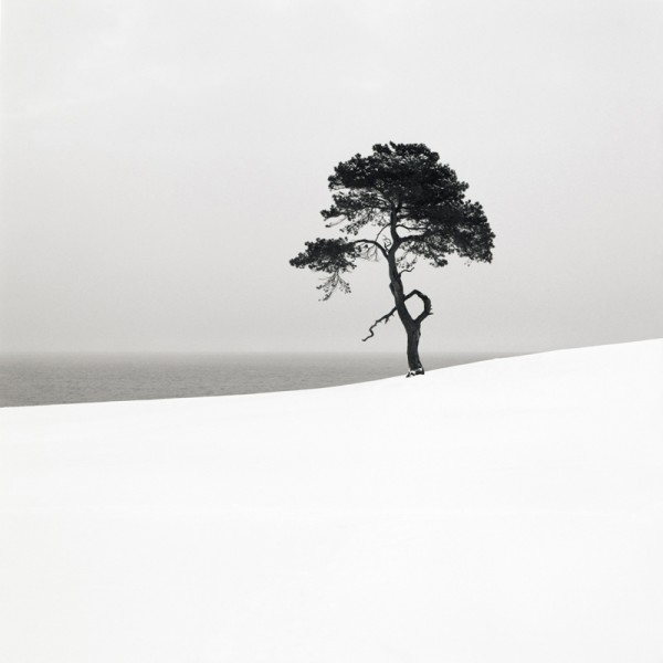 Snow Scene XX