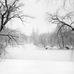 The Lake at Central Park, NYC