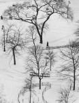 Washington Square, NY: Andre Kertesz (Sold)