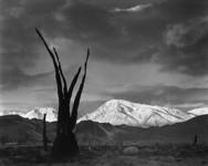 Sunrise, Mt. Tom, Sierra Nevada: Ansel Adams