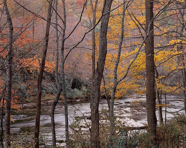 Creekside, North Carolina, Autumn