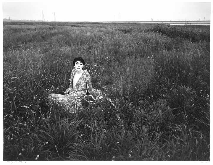 Simon: A Private Landscape (#5593-3)