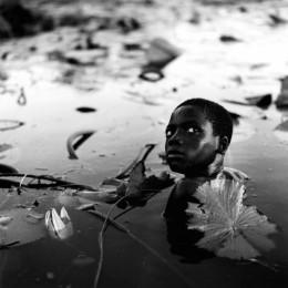 Among the Lilies, Mali