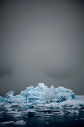 Bergy Bits Jammed up in Errera Channel (v) Antarctica