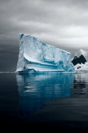 Majestic Iceberg I (v), Errera Channel, Antarctica