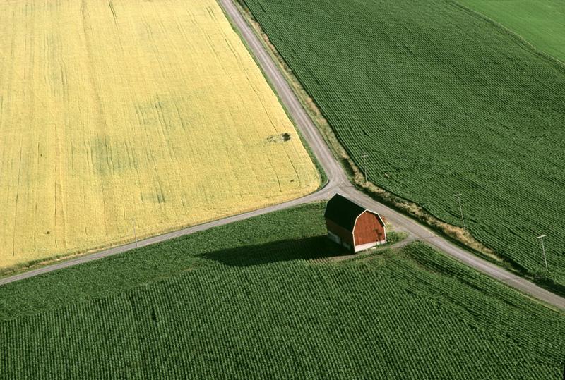 Red Barn on Wye Road, Wayne County, NY