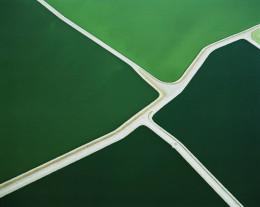 Five Green Ponds, Batavia, NY