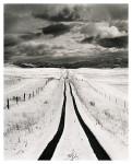 Homeward Bound (vertical)