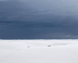 Desert Walk (Group), Brazil