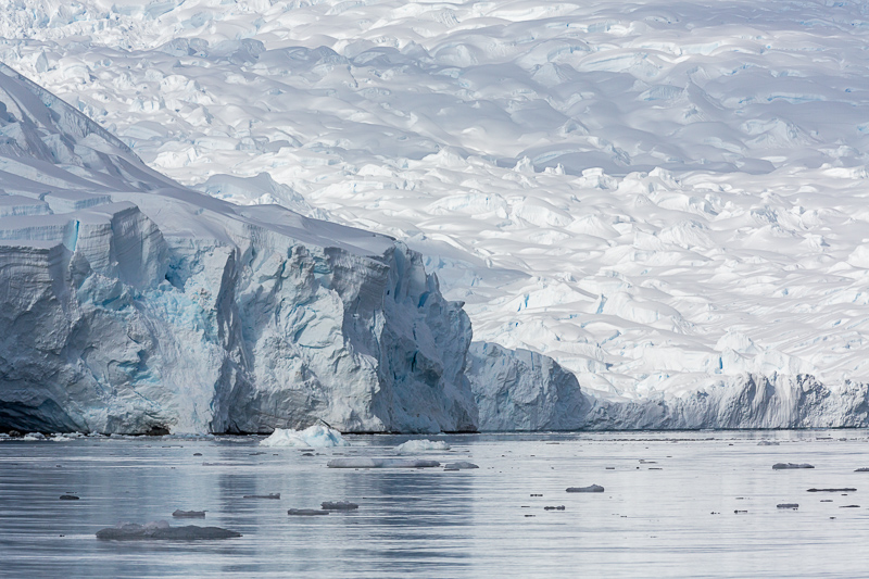 Glaciers, Scontorp Cove in Paradise Bay